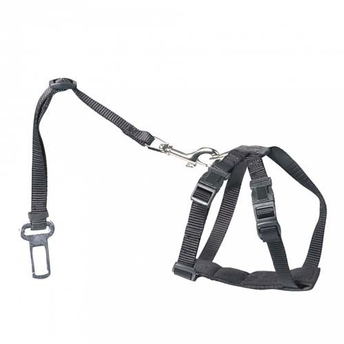 EBI D&D en Route Dog-Secure    XS Brustumfang 20-50cm