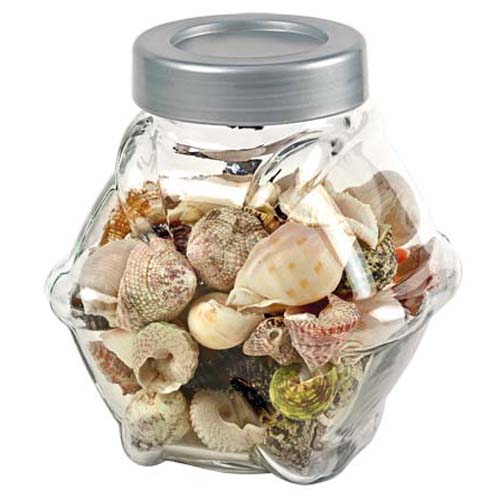 HOBBY Sea Shells decorative glass L 1L- dekoratívne sklo